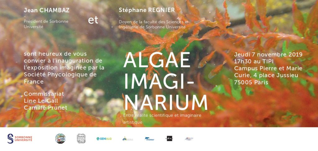 Algae Imaginarium