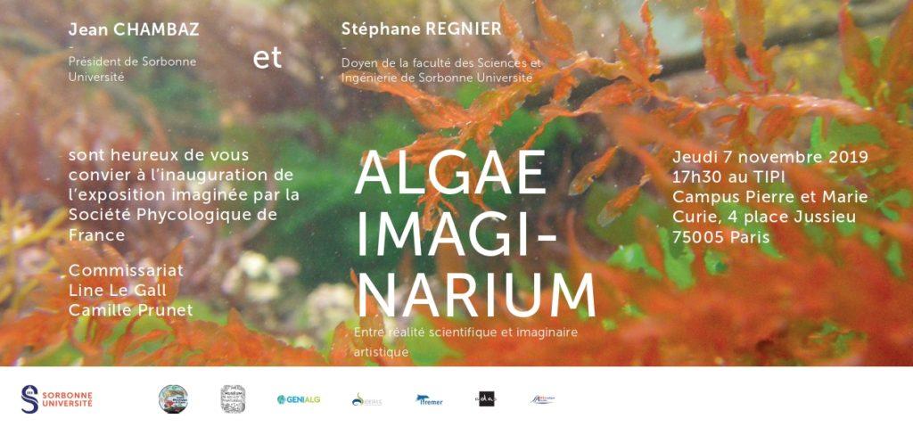 Algae Imaginarium